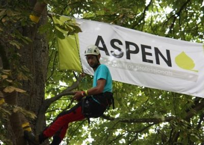 Sponsors-BTCC-2017-46-Aspen