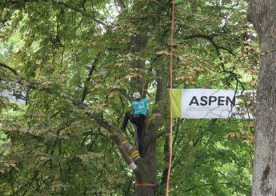 Sponsors-BTCC-2017-58-Aspen