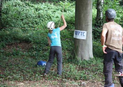 Sponsors-BTCC-2017-FTC-Trees